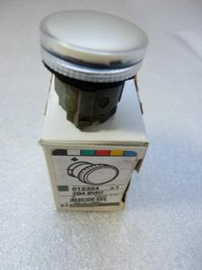 Telemecanique ZB4 BV07 Leuchtmelder