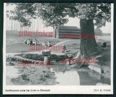 von 1933 -  Dorfbrunnen unter der Linde in Oberhaid
