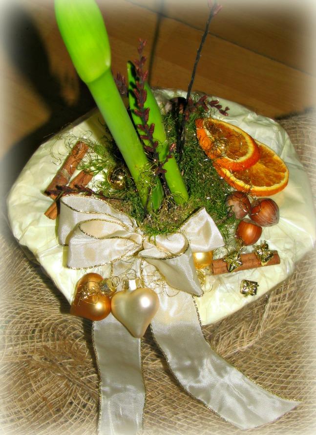 amaryllis im topf zauberhaft dekoriert blumenversand ebay. Black Bedroom Furniture Sets. Home Design Ideas