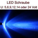 5 Stück LED Schrauben BLAU