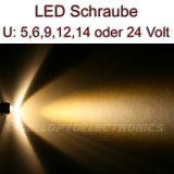 5 Stück LED Schrauben WARMWEISS