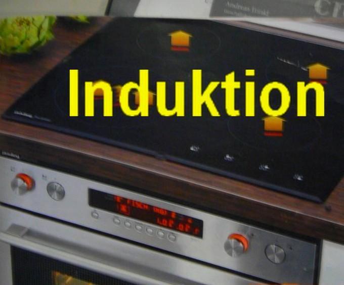 einbau induktion herdset induction herd einbau ebay. Black Bedroom Furniture Sets. Home Design Ideas