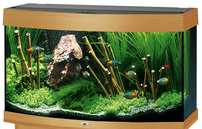 juwel vision 180 aquarium 180l buche ebay. Black Bedroom Furniture Sets. Home Design Ideas