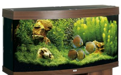 juwel vision 260 aquarium 260l dunkel braun ebay. Black Bedroom Furniture Sets. Home Design Ideas