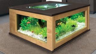 Aquatable 130 eiche hell wenge aquarium als for Aquarium wohnzimmertisch