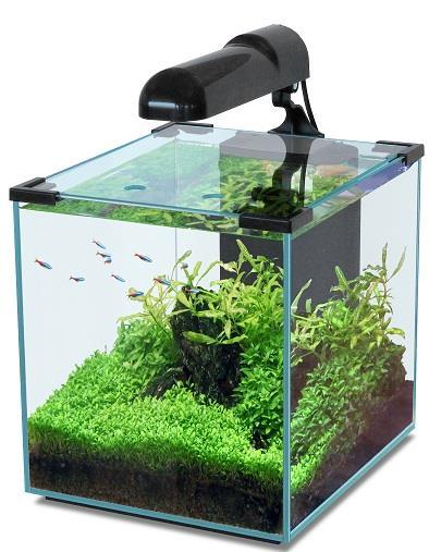 aquatlantis nano cubic nano aquarium with led 20 30 40 liter. Black Bedroom Furniture Sets. Home Design Ideas