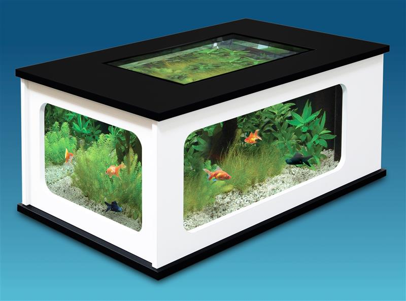 gazechimp doppelstock kugel glaskugel glasflasche glasvase terrarium wohnzimmer tisch haus. Black Bedroom Furniture Sets. Home Design Ideas