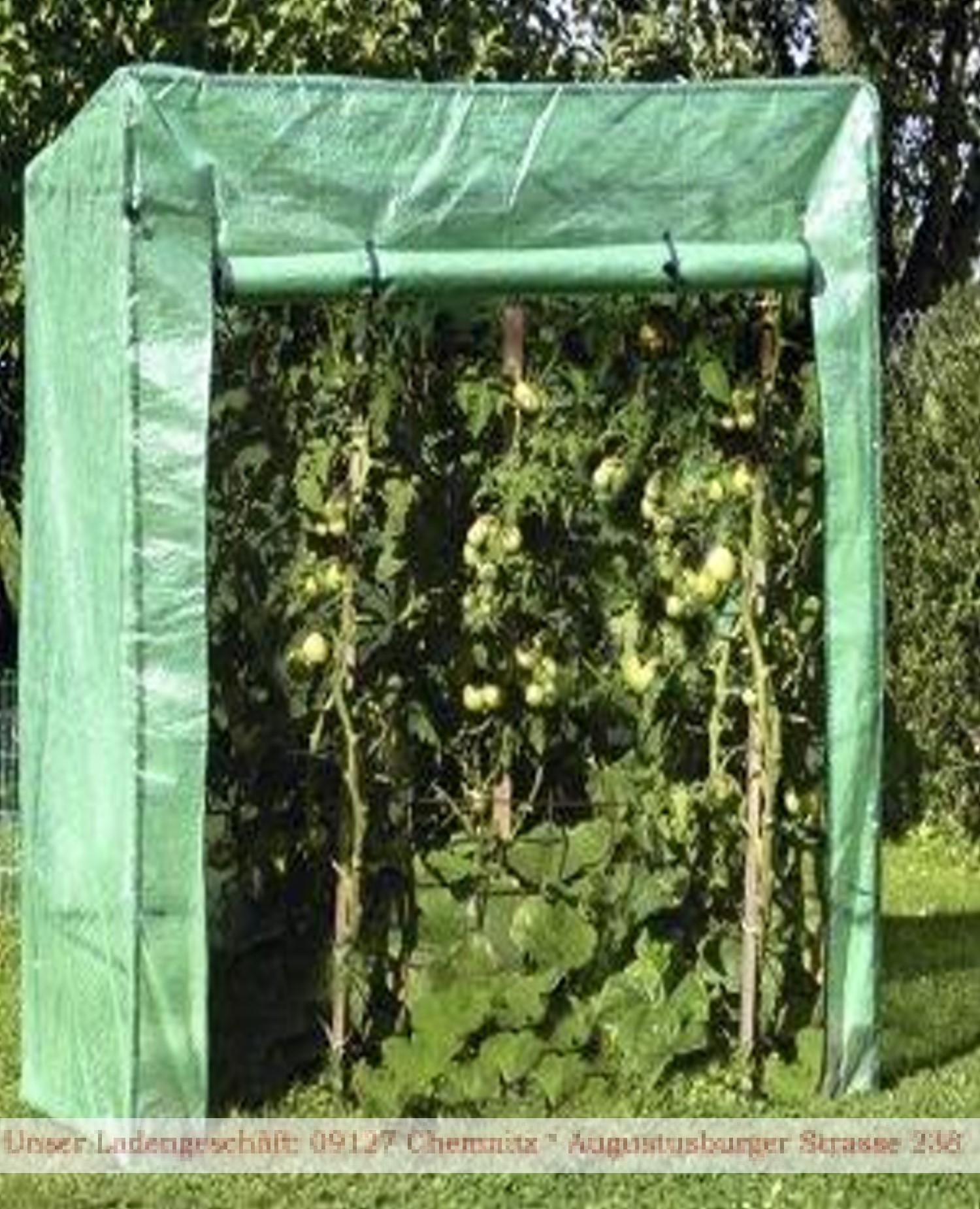 tomatengew chshaus fr hbeet winterschutz k belpflanzen ebay. Black Bedroom Furniture Sets. Home Design Ideas