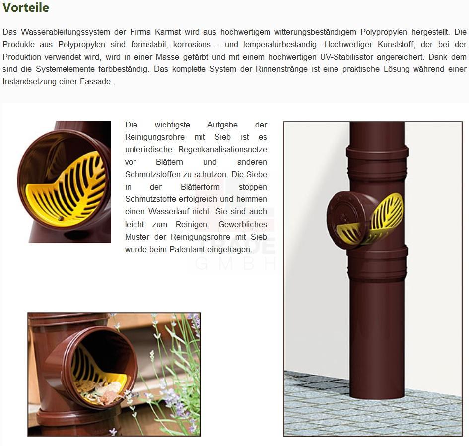reinigungsrohr mit sieb f r dachrinnen fallrohr 110 mm grau rohr schraub deckel ebay. Black Bedroom Furniture Sets. Home Design Ideas