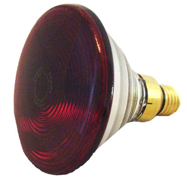 Infrared Lamp Bulb Philips Infraphil Par38 Ir 150w 230v E27 Ebay