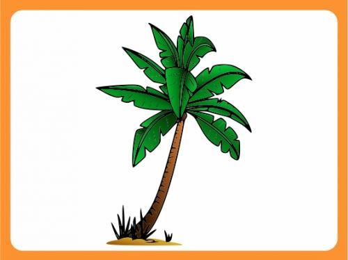 Wandtattoo wallprint kinderzimmer palme strand dschungel for Wandtattoo kinderzimmer dschungel