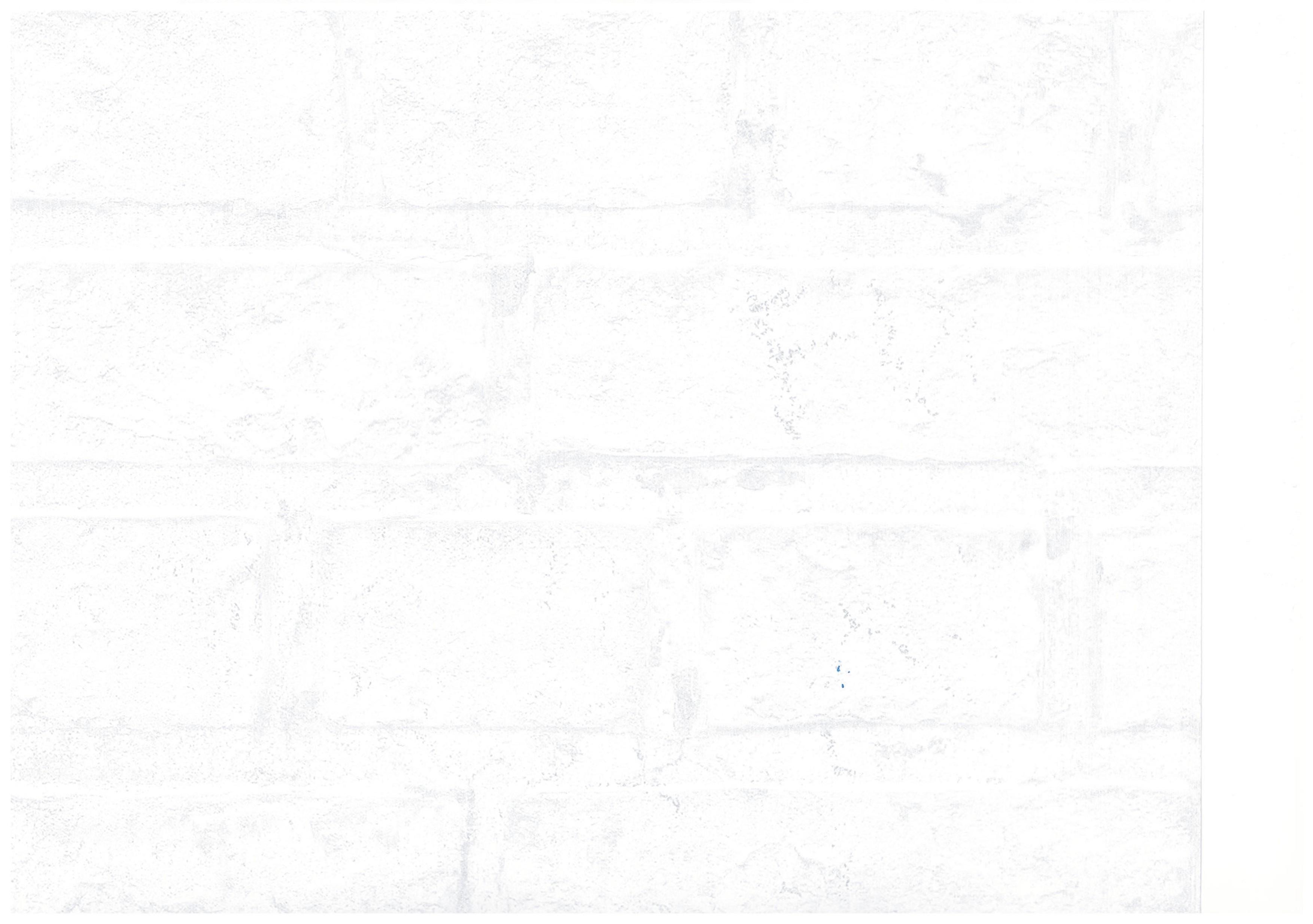 Hip fun 2014 120621 rasch textil tapeten papier neu stein optik wei ebay - Tapeten holzoptik weiss ...