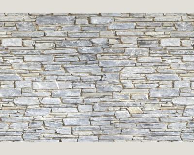 Ap digital 4701 17 foto tapete vlies neu steine mauer steinwand ebay - Fototapete steinwand ...
