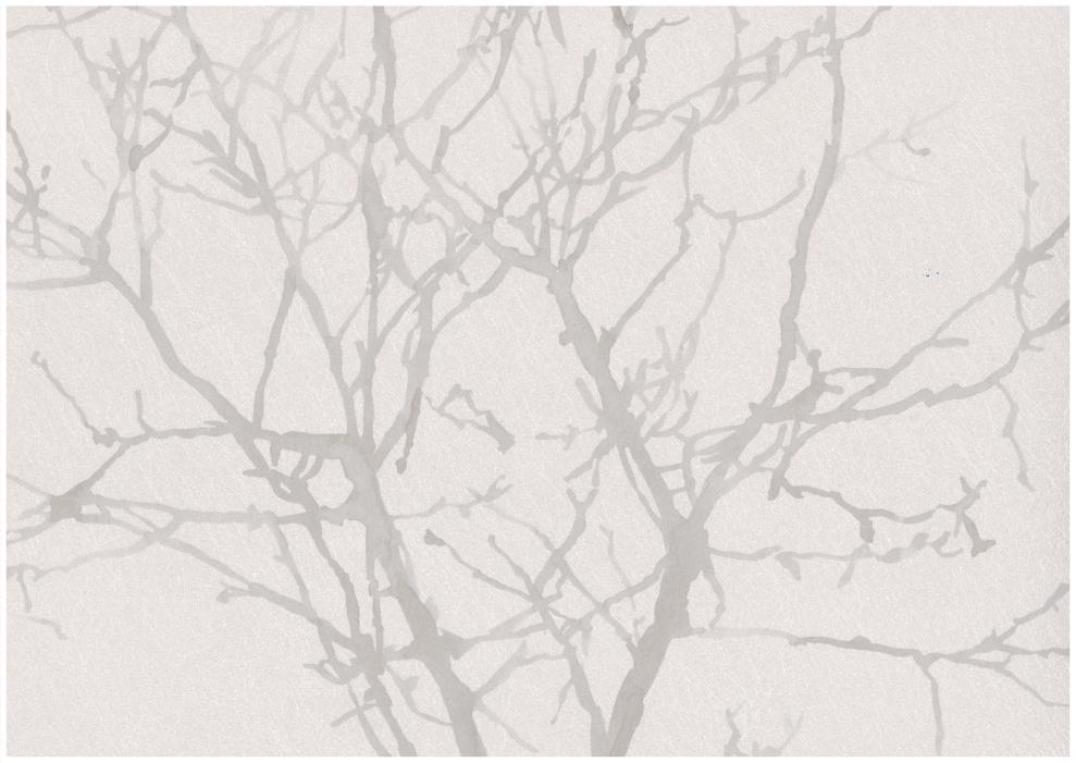 Tapete Creme Braun Fb46 – Hitoiro