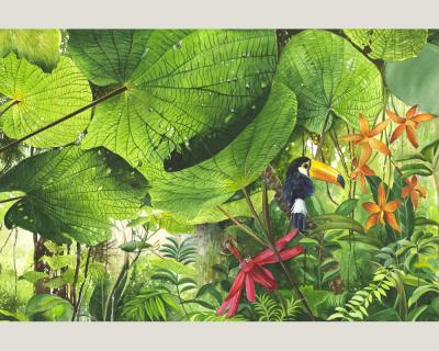 nature 0312 71 foto tapete vlies neu natur jungle dschungel dickicht urwald ebay. Black Bedroom Furniture Sets. Home Design Ideas