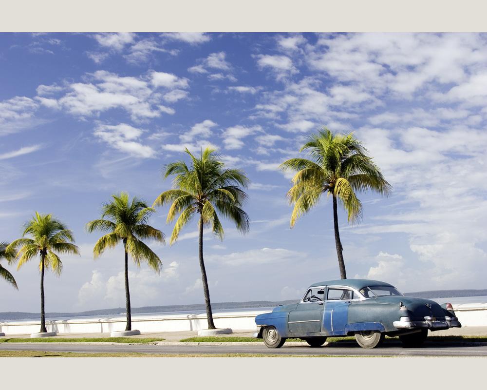 Fototapeten Palmenstrand : Nature – 0312-96 Foto Tapete Vlies Neu Natur Kuba Palmen Strand