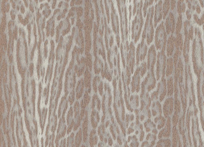 Rasch Tapeten Natural Instinct : Rasch Tapete Natural Instinct 2013 – 781502 Neu Fell Optik wei? beige