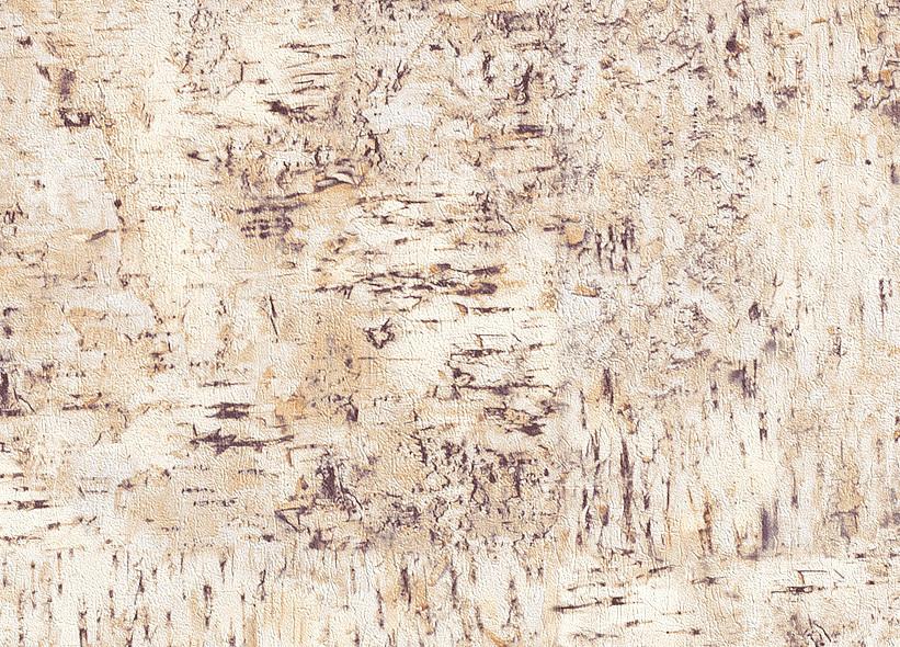 rasch tapete in the woods 784275 holz optik vlies neu ebay. Black Bedroom Furniture Sets. Home Design Ideas