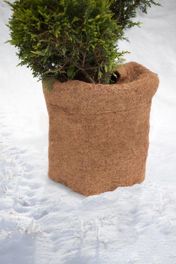 winterschutzmatte winterschutz frostschutz f r pflanzen. Black Bedroom Furniture Sets. Home Design Ideas