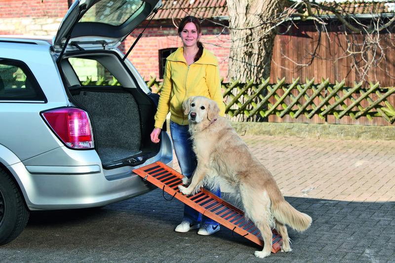profi hunderampe hundetreppe einstiegshilfe f r hunde. Black Bedroom Furniture Sets. Home Design Ideas